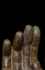 Buddha Hand MET.30.81 photo 7